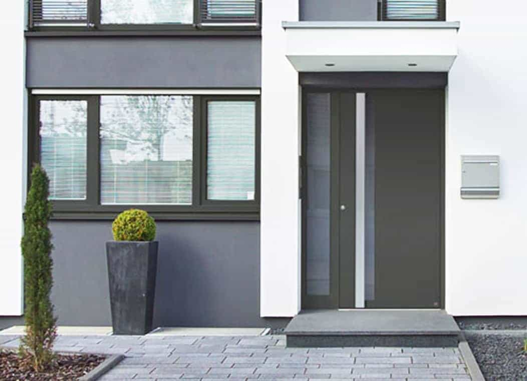 Entrance doors with Veyna filling